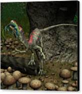 A Compsognathus Prepares To Swallow Canvas Print by Walter Myers