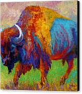 A Journey Still Unknown - Bison Canvas Print by Marion Rose