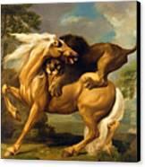 A Lion Attacking A Horse Canvas Print
