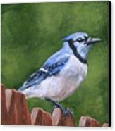 A Little Piece Of Sky Canvas Print by Brandy Woods