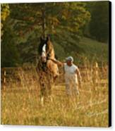 A Man And His Horse Canvas Print by Terry Kirkland Cook