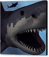 A Megalodon Shark From The Cenozoic Era Canvas Print