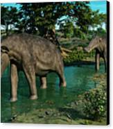 A Pair Of Platybelodon Grazing Canvas Print by Walter Myers