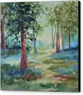 A Path Not Taken Canvas Print
