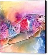 A Rainbow Of Salmon Canvas Print