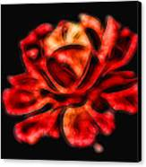 A Red Rose For You 2 Canvas Print by Mariola Bitner