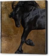 A Regal Bow Canvas Print