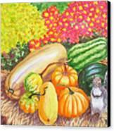 A Squirrel And Pumpkins.2007 Canvas Print