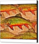 A Trout Lovers Dream Canvas Print by Terry Mulligan
