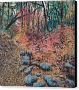 A Walk In The Woods Canvas Print by Lucinda  Hansen