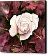 A White Rose Canvas Print
