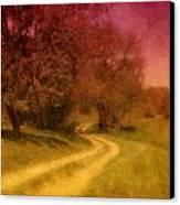A Winding Road - Bayonet Farm Canvas Print by Angie Tirado