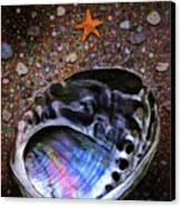 Abalone Canvas Print