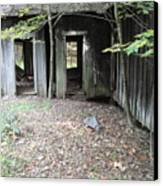 Abandoned House Canvas Print by Terry  Wiley