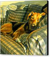 Abby Canvas Print by Tom Hedderich