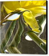 Abstract Artwork Daffodils Flowers 1 Natural Abstract Art Prints Glass Vase Water Art Light Air Canvas Print