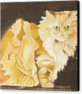 Abstract Cat Canvas Print by Joseph Palotas