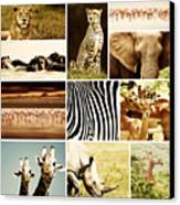 African Animals Safari Collage  Canvas Print by Anna Om
