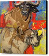 African Buffalo Canvas Print