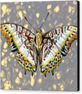 African Butterfly Canvas Print