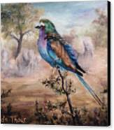African Roller Canvas Print