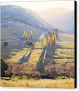 Afternoon Light Tarana  Canvas Print by Graham Gercken