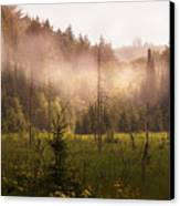 Afternoon Mist Canvas Print