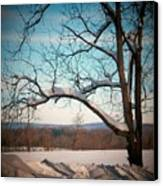 Afterr The Blizzard Canvas Print