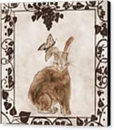 Aged Bunny Canvas Print by Eva Thomas