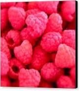 Agenda For Today ... Raspberry Jam Canvas Print by Gwyn Newcombe