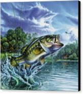 Airborne Bass Canvas Print by Jon Q Wright
