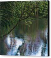 Alafia River Reflection Canvas Print