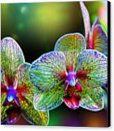 Alien Orchids Canvas Print by Bill Tiepelman