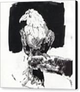 Alone In The Dark Canvas Print