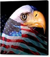 America The Beautiful Canvas Print