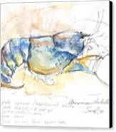 American Blue Lobster Canvas Print