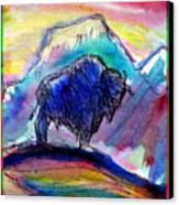 American Buffalo Sunset Canvas Print by M C Sturman