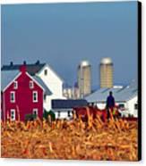 Amish Farm Canvas Print by Thomas R Fletcher