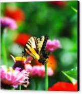 Amongst The Flowers Canvas Print by Bill Cannon