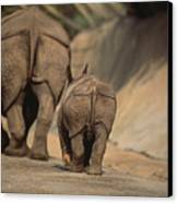 An Indian Rhinoceros And Her Baby Canvas Print by Michael Nichols