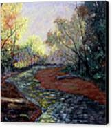 Angel In Nature Canvas Print by Stan Hamilton