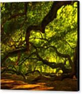 Angel Oak Limbs 2 Canvas Print by Susanne Van Hulst