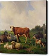 Animals Grazing In A Meadow  Canvas Print by Hendrikus van de Sende Baachyssun