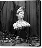 Apollo In The Backyard Canvas Print