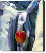 Apple Falls Canvas Print
