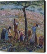 Apple Harvesting Canvas Print