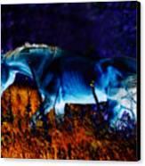 Arabian Stallion Canvas Print by ELA-EquusArt