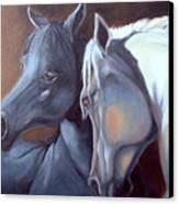 Arabique Canvas Print
