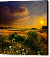 Aridity Canvas Print