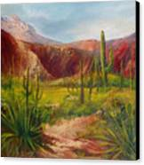 Arizona Beauty Canvas Print by Robert Carver